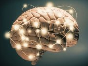 پنجمین سمپوزیوم انجمن های جراحان مغز و اعصاب