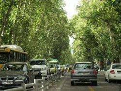 Valiasr Street Tehran