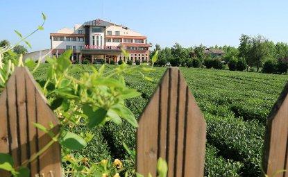 هتلی در مزرعه چای