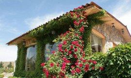 image 8 from Deniz Bari Hotel Urmia