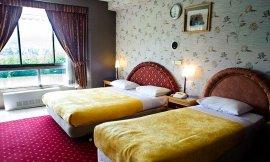 image 8 from Espinas Hotel Astara