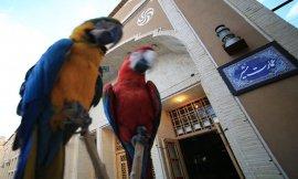 image 4 from Hotel Moshir Garden Yazd