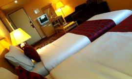 image 8 from International Hotel Qom