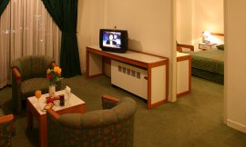 image 8 from Laleh Hotel Sarein