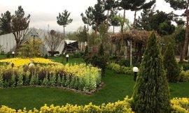 image 13 from Park Hayat Hotel Mashhad