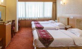 image 7 from Saina Hotel Tehran