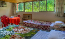 image 11 from Tourism Hotel Chalus